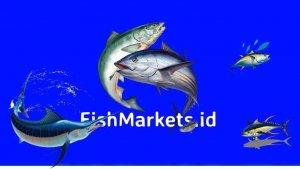 fishmarkets.id. jual ikan segar di jakarta